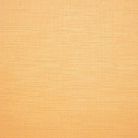 LEN T 0852 Orange