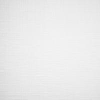 LEN T 0800 White
